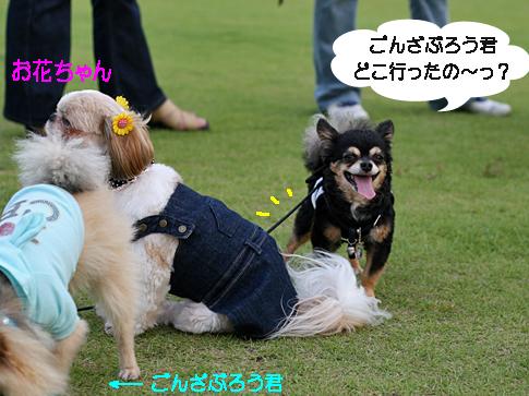 IMG_3645.jpg