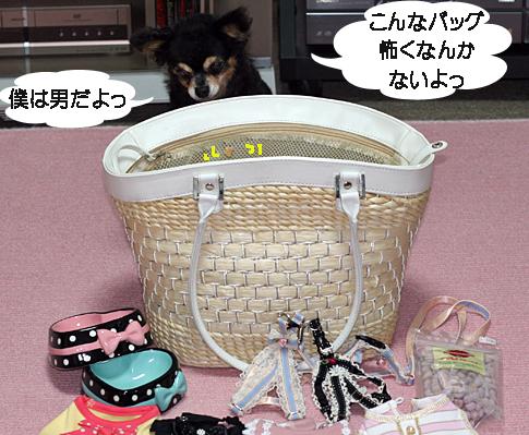 IMG_3854.jpg