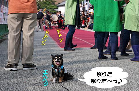 IMG_42051_edited-1.jpg