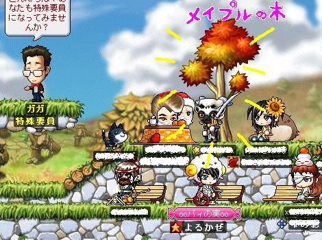 Maple0004_20090307183738.jpg