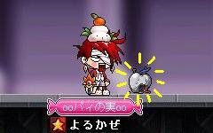 Maple0005_20090125235306.jpg
