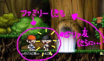 Maple0005_20090507001814.jpg