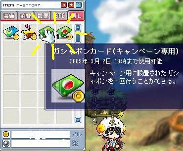 Maple0007_20090307183746.jpg
