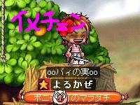 Maple0007_20090523032028.jpg