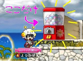 Maple0008_20090307183750.jpg