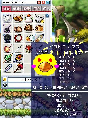 Maple0008_20090429222323.jpg