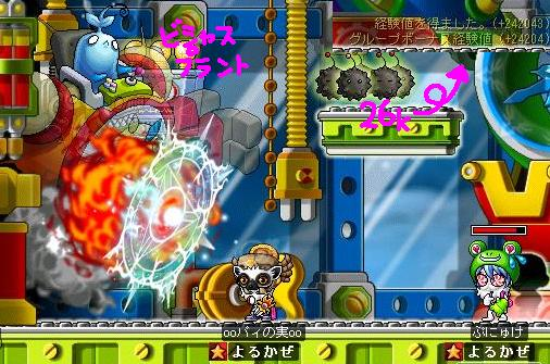 Maple0008_20090507001839.jpg