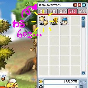 Maple0013_20090507001918.jpg