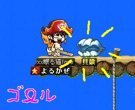 Maple0016_20090307183819.jpg
