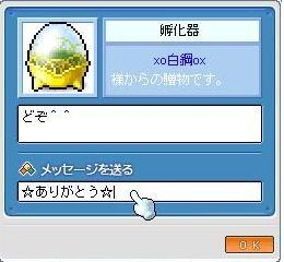 Maple0020_20090528214213.jpg
