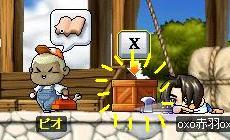 Maple0022_20090125235427.jpg