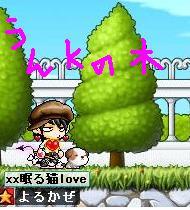 Maple0025_20080927204302.jpg