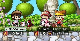 Maple0029_20080927204326.jpg