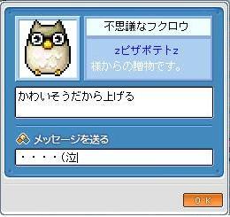 Maple0031_20090120180920.jpg