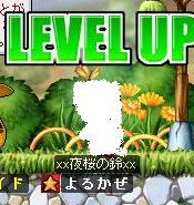 Maple0033_20080913005408.jpg