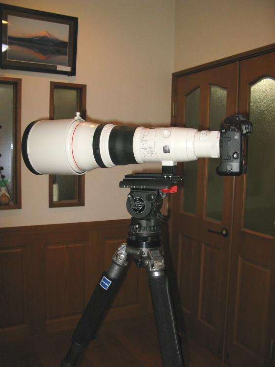 IMG_0004キャノンEF800mm