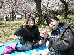 安部山公園花見3