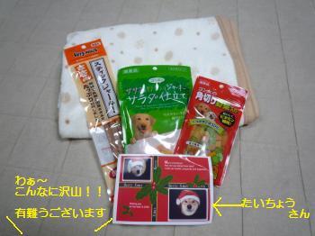 P1010830_convert_20091224214358ブログ