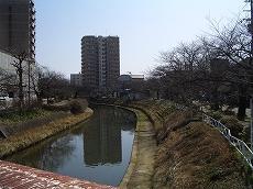 松川からいたち川沿いに進む。