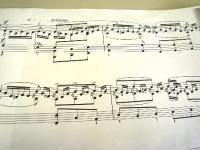 Duetto3