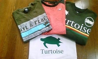 Turtoiseアパレル②