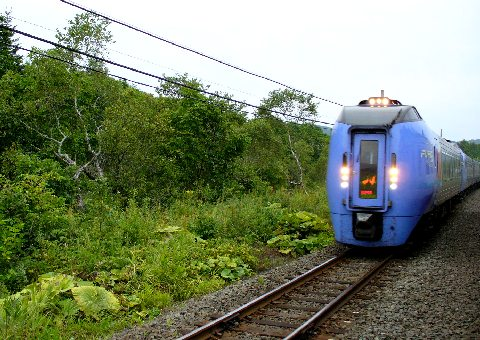 古瀬駅を通過した特急列車