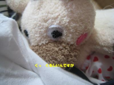 IMG_0429ろばちゃん