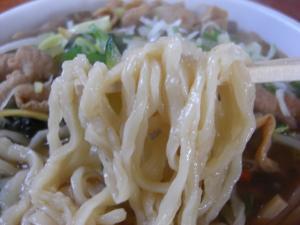 09020112宮口軒・おまかせ羅阿麺 麺アップ