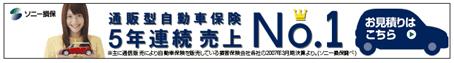20080530_infoseek_ソニー損保