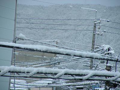 31日雪 005