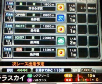 11_20090505165056.jpg