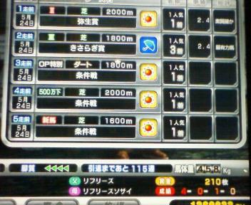 12_20090524212842.jpg