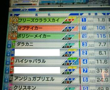 13_20090509175610.jpg