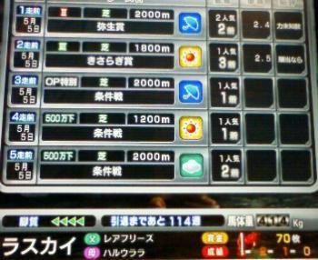 14_20090505165116.jpg