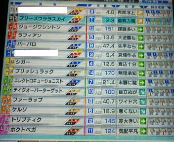 14_20090506172344.jpg