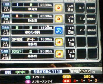 15_20090524212903.jpg