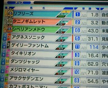 18_20090524213137.jpg