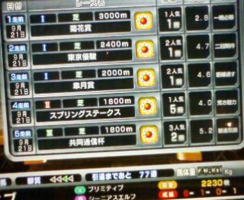 200809211330000.jpg
