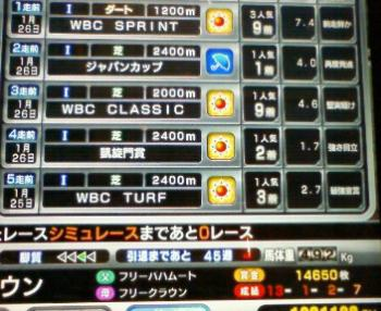 WBCS9着成績
