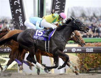 20090222-00000508-sanspo-horse-view-000.jpg