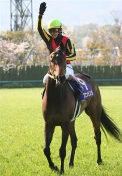 20090412-00000020-spnavi-horse-view-000.jpg