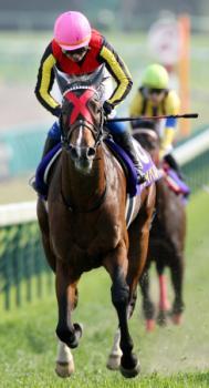 20090419-00000012-maip-horse-view-000.jpg