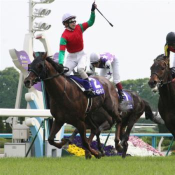 20090503-00000029-spnavi-horse-view-000.jpg