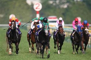 20090510-00000513-sanspo-horse-view-000_20090511220049.jpg