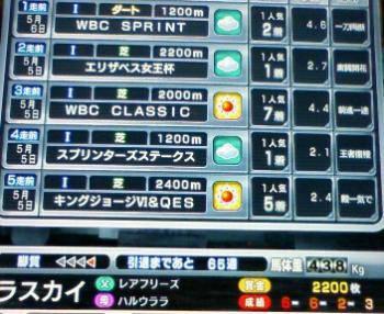 3_20090506172040.jpg