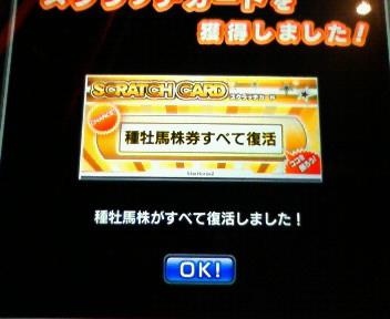 3_20090509175252.jpg