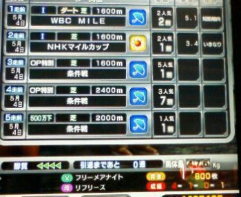 4_20090505164812.jpg