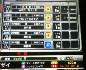 4_20090524191116.jpg