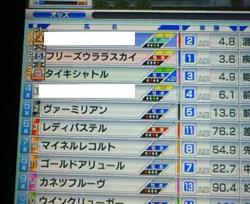 5_20090506172052.jpg