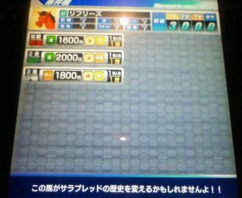 6_20090524212636.jpg